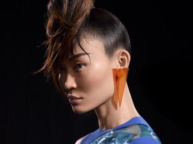 Timeless ponytail
